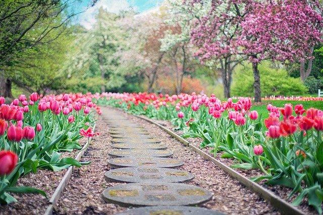 Ландшафтный дизайн сада: оригинальные идеи оформления