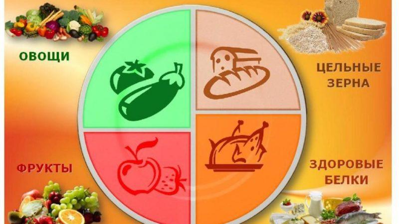 MyPlate: альтернатива пирамиде здорового питания