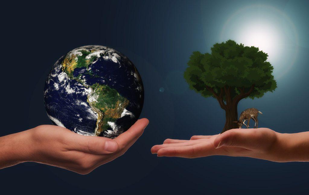Натуральный материал не всегда более экологичен