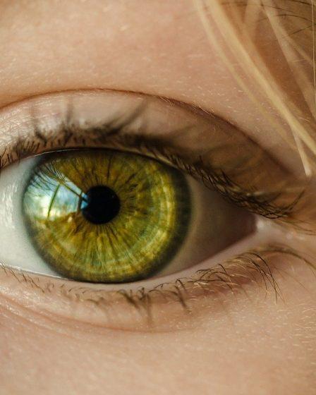 профилактика сохранения зрения